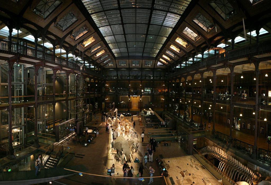 musée paris histoire naturelle