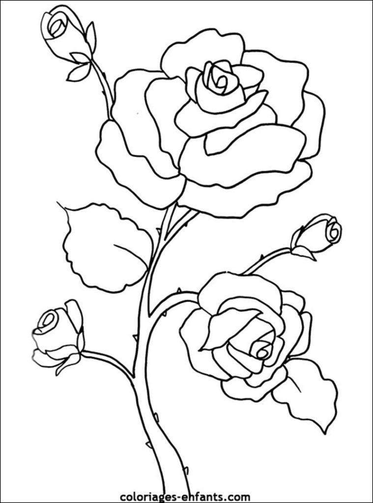 fleurs coloriage